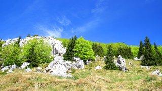 Voyage Famille Parc Velebit - circuits sur mesure Croatie Europe
