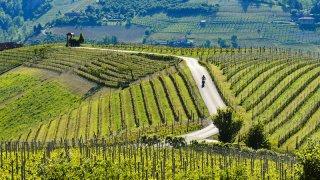 Roadtripen vélo vignobles de slovénie en Europe
