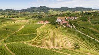 Vallée goriska brda - vacances actives sur mesure Slovénie Europe