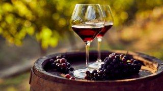 Dégustation de vins Europe