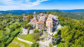 fun fact croatie atypique dalmatien Dalmatie chien - Terra Balka voyages Croatie