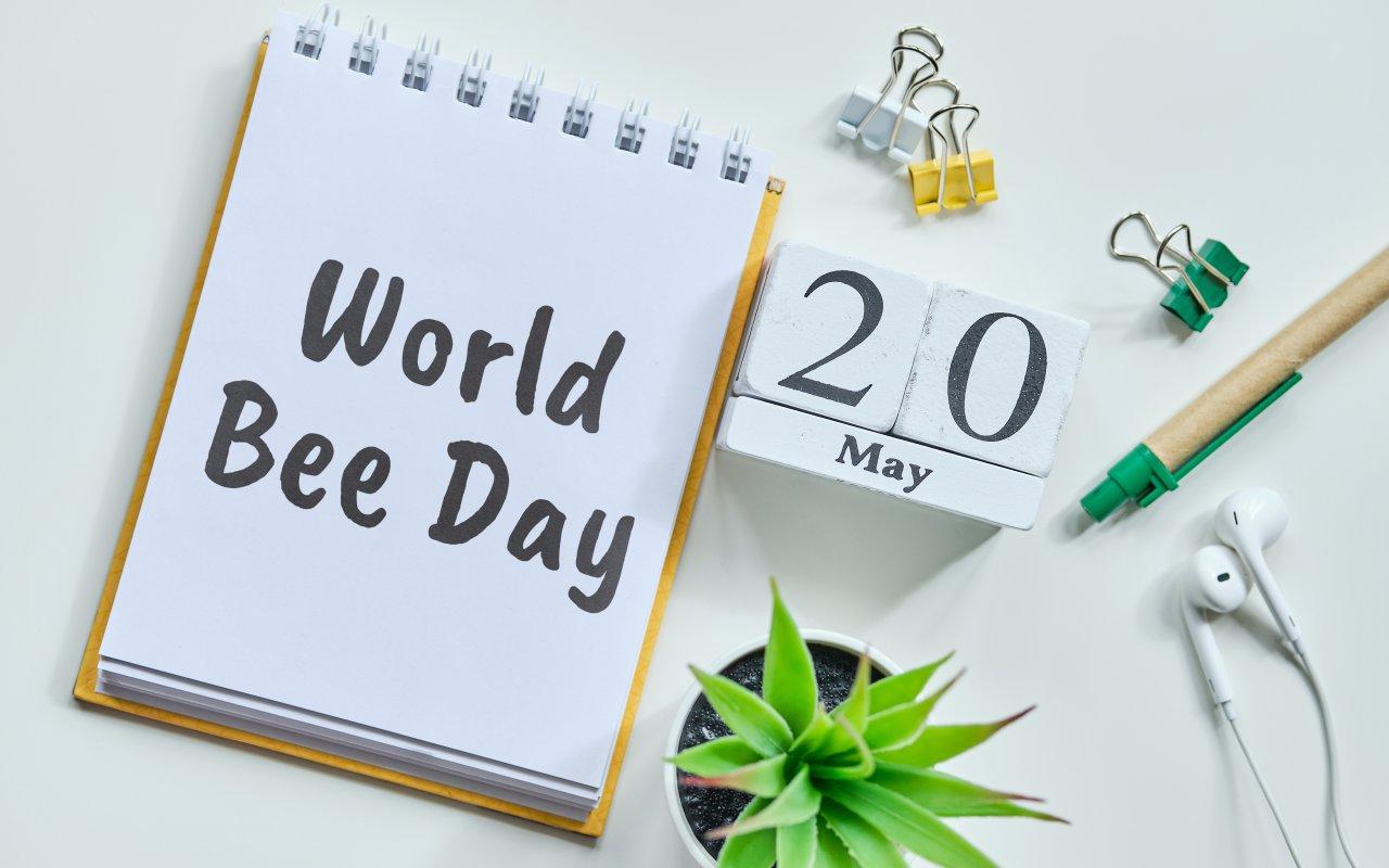 Journée de l'abeille Apiculture - Slovénie Europe Terra Balka