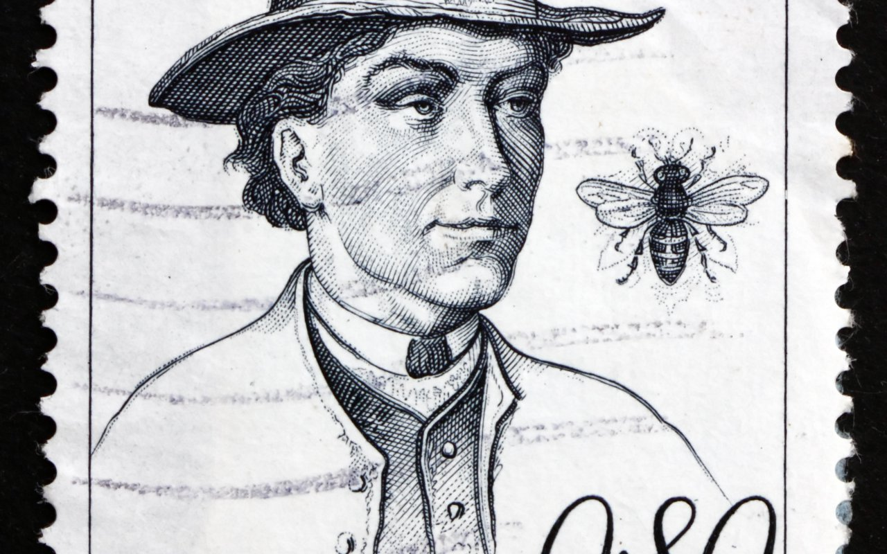 Anton Jansa apiculture miel Slovénie Terra Balka Voyage Famille