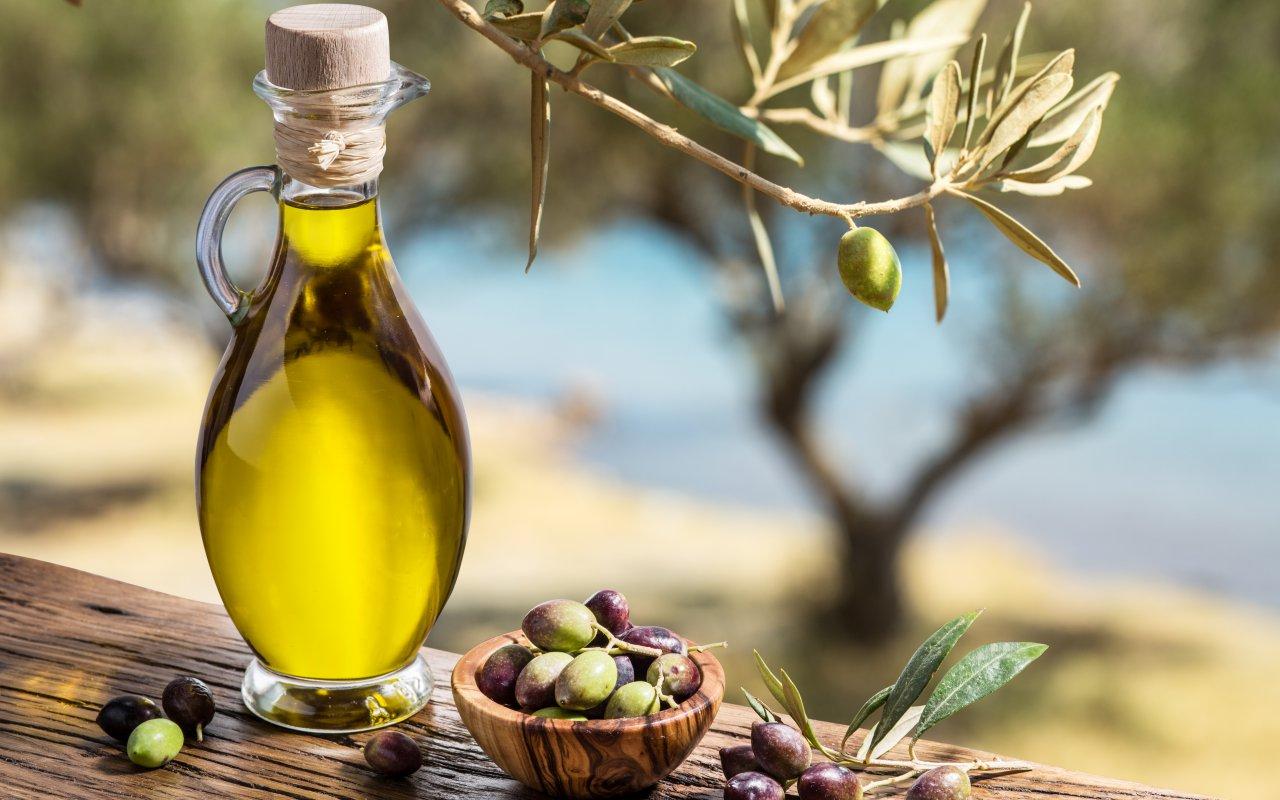 oliviers huile d'olive - Circuits sur-mesure en Croatie