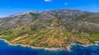 Au coeur des vignobles de Dalmatie en Croatie
