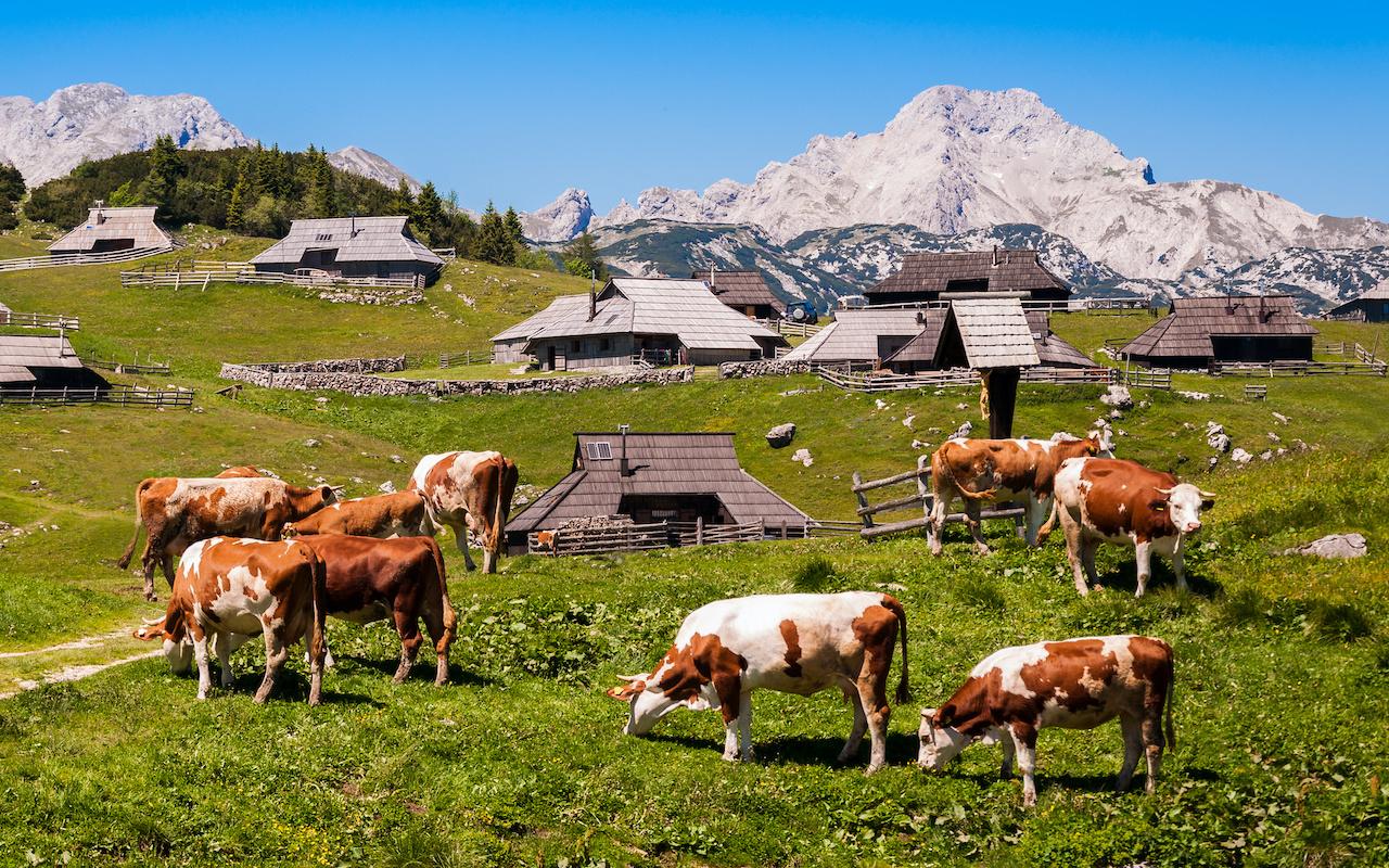 Velika Planina - circuits aventure Slovénie Europe
