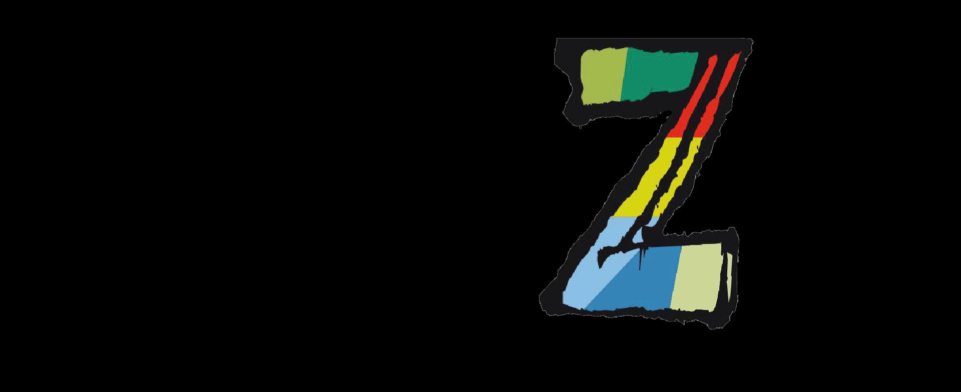 logo togezer