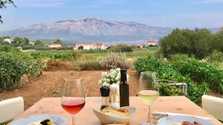 degustation vin grk - vacances sur mesure croatie europe